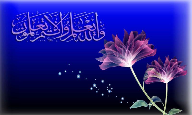 50 Islamic Wallpaper Download On Wallpapersafari