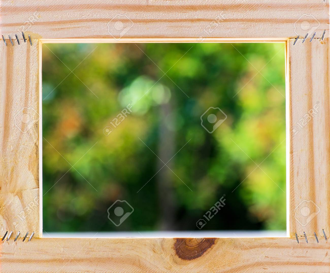 Picture Frame On Blurred Tree Backgroud Using Wallpaper Or 1300x1078