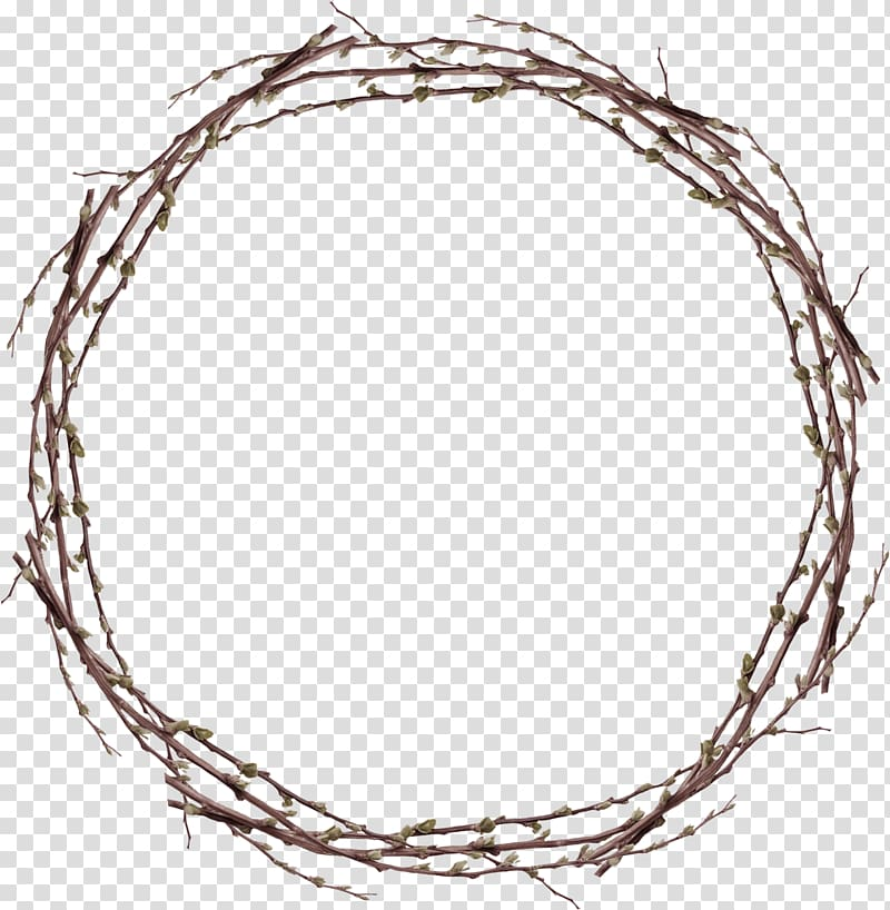 Round of plant stems Twig Twigs Ring transparent background PNG 800x818