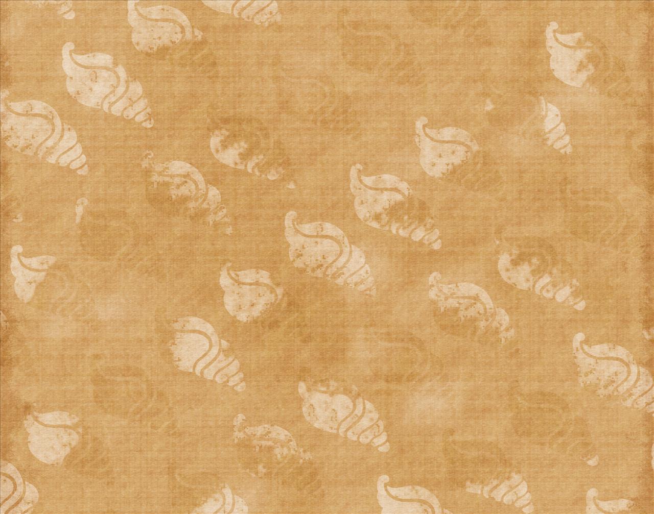 shadow of sea shell wallpaper in desktop backgrounds 1280x1007