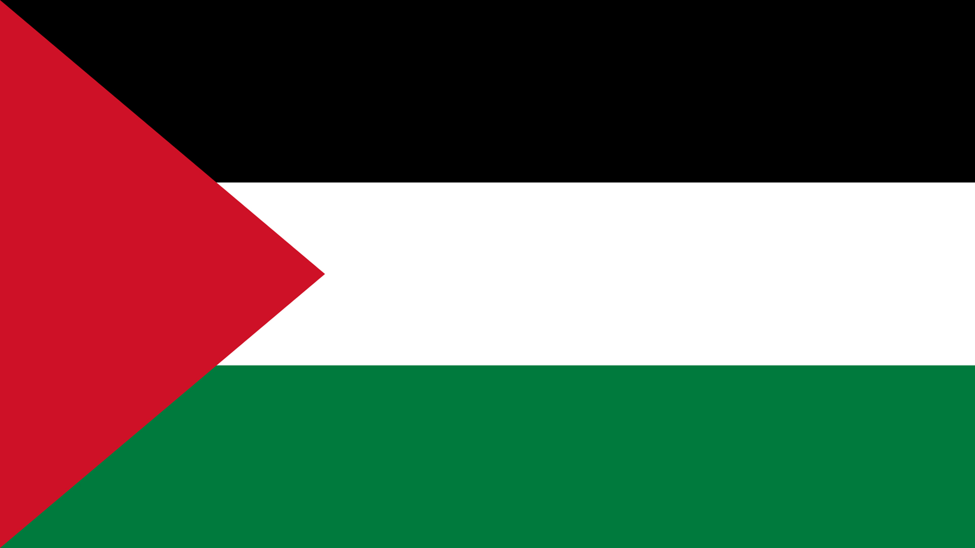 Palestine Flag   Wallpaper High Definition High Quality Widescreen 1920x1080