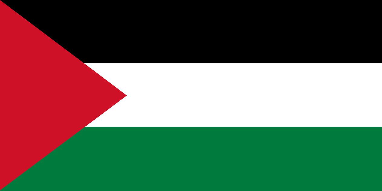 Palestinian Flag by 5StarArt 1264x632