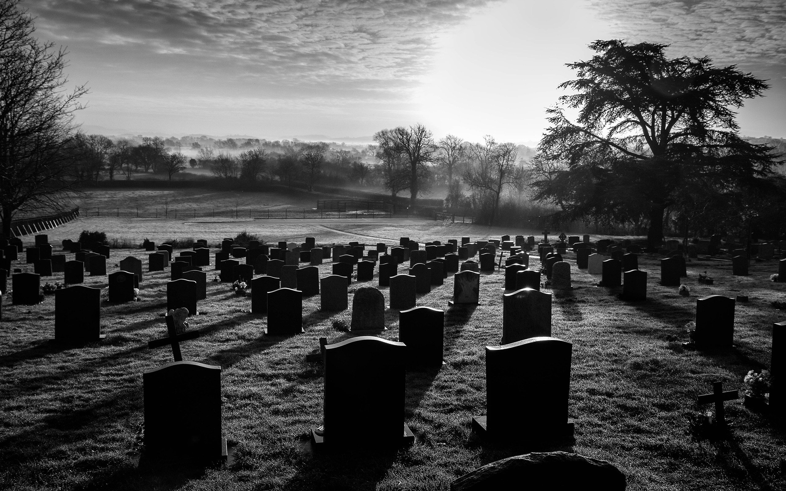 Graveyard Backgrounds ·① WallpaperTag  Halloween Tombstone Background