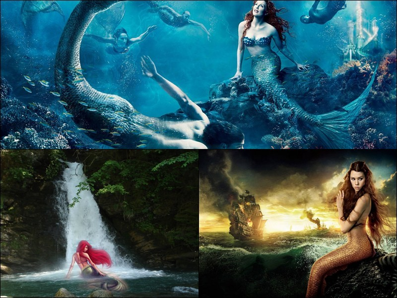 beautiful mermaids animated wallpaper desktop themes 425353jpeg 800x600