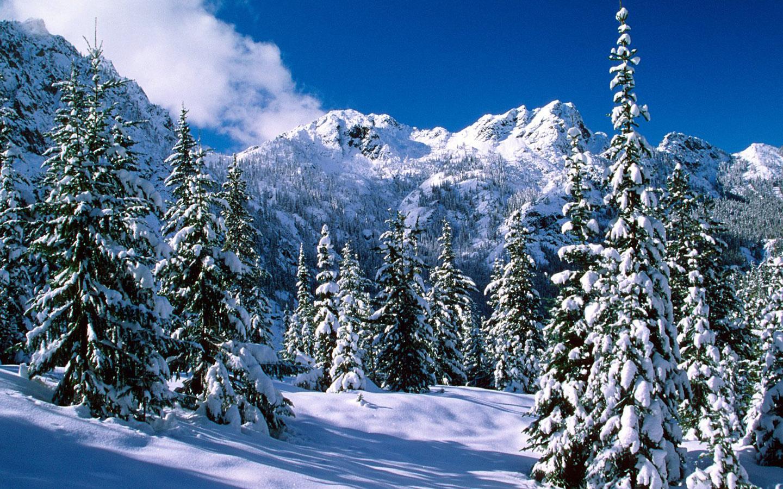 Download dreamy mountains hd wallpaper for 1440 x 900 hdwallpapers - Winter Wonderland Dreamy Snow Scene Wallpaper 1440x900 No 46 Desktop