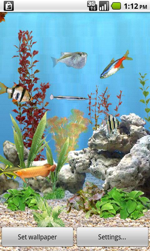 Download Aquarium Live Wallpaper Download For your android 480x800