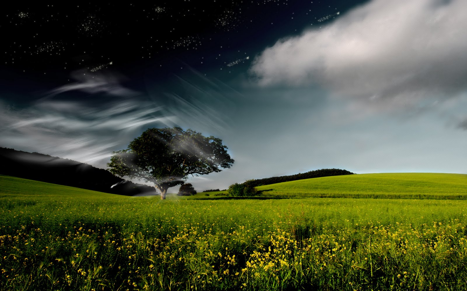 Nature Fantasy Pictures Widescreen Hd Desktop Wallpaper 1600x1000