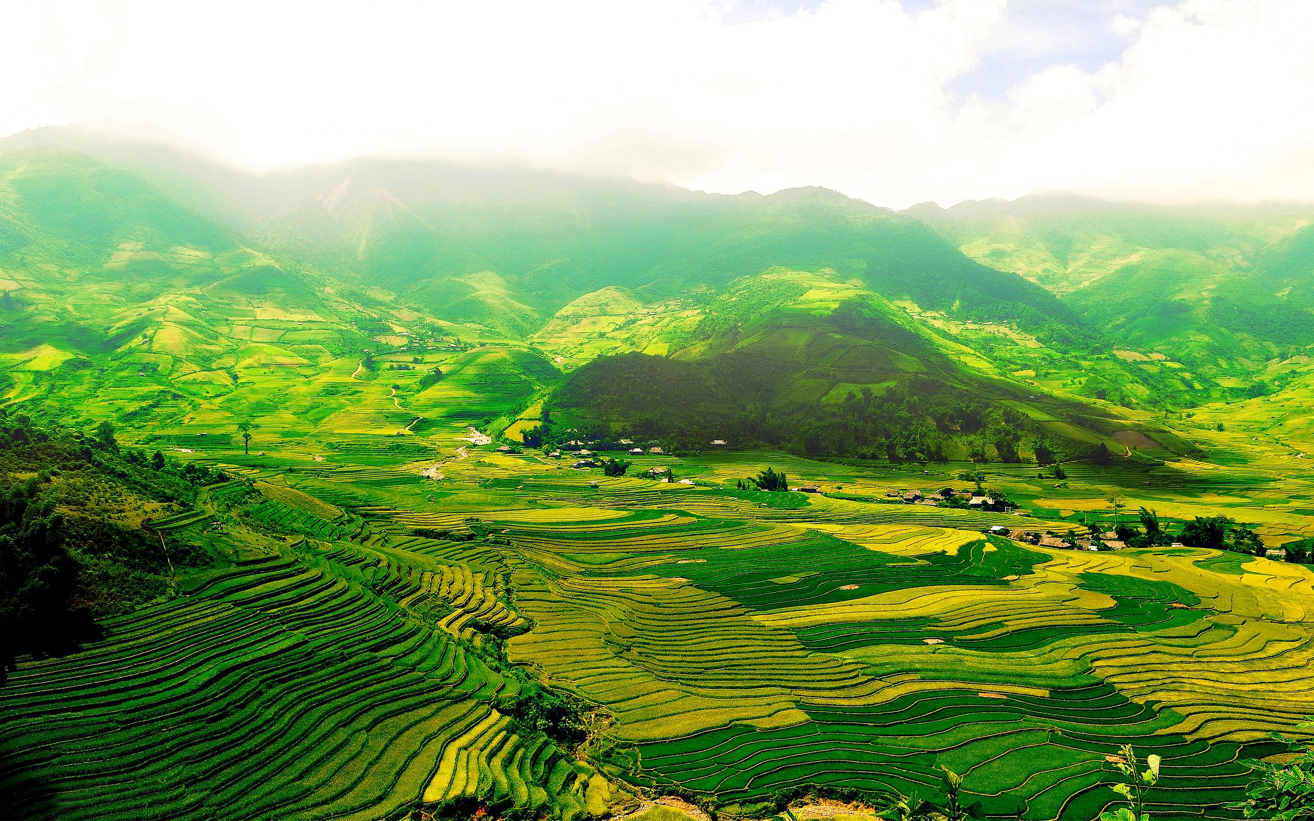 Vietnam Wallpapers Best Wallpapers 2560x1600