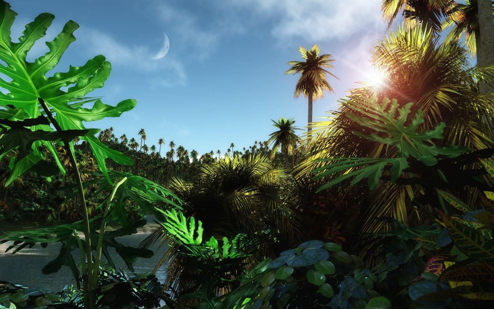 Jungle Desktop Wallpaper HD Wallpapers Backgrounds Jungle   fre 1600x1000