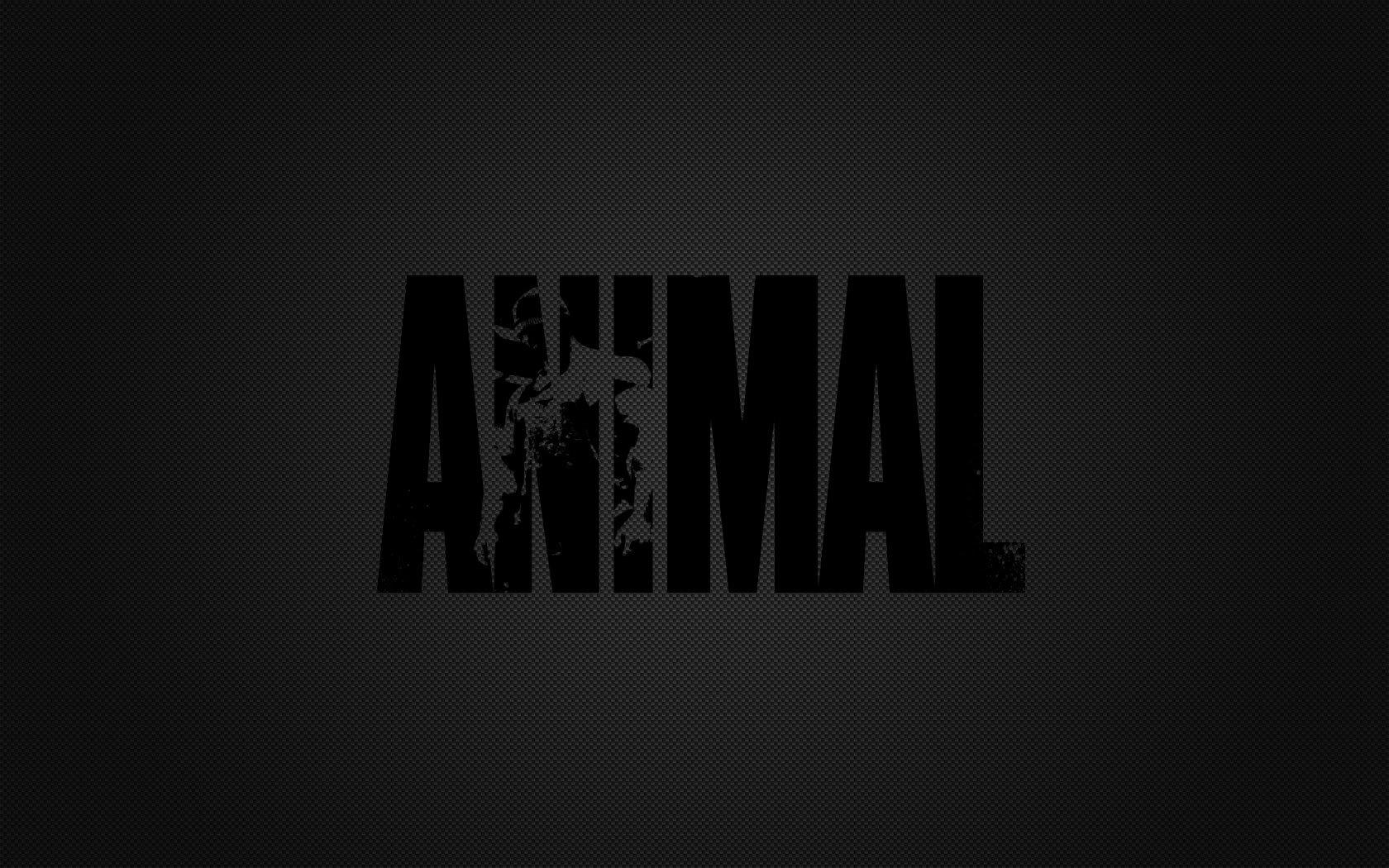 Animal Pak Wallpaper - WallpaperSafari