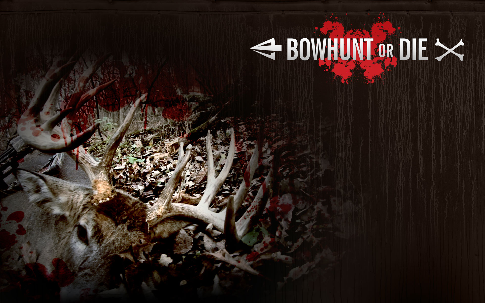 Bow Hunting Wallpaper 1920x1200