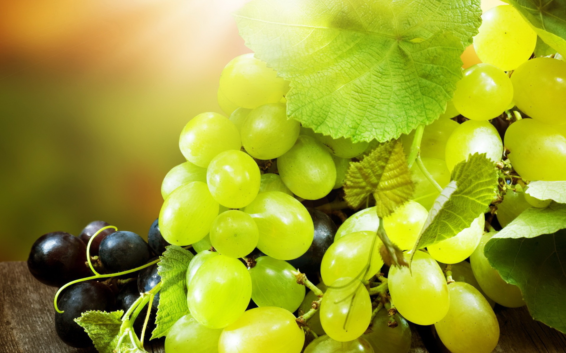 45 Best HD Walls of Grapes HDQ Grapes Wallpapers 1920x1200