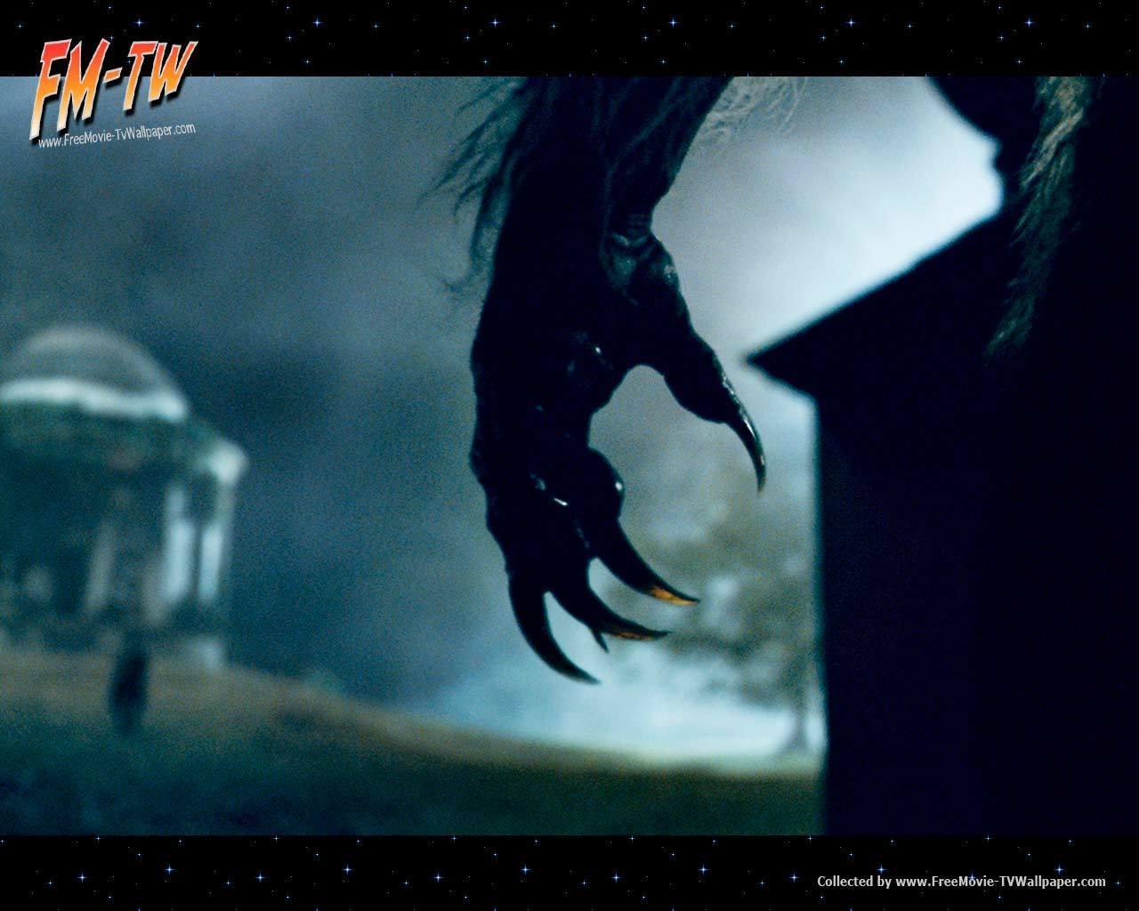 The Wolfman Movie Poster   Werewolf Movies Wallpaper 10093718 1280x1024