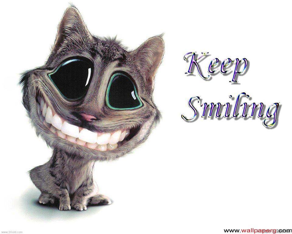 Get Cute Cat Wallpapers Cartoon Background