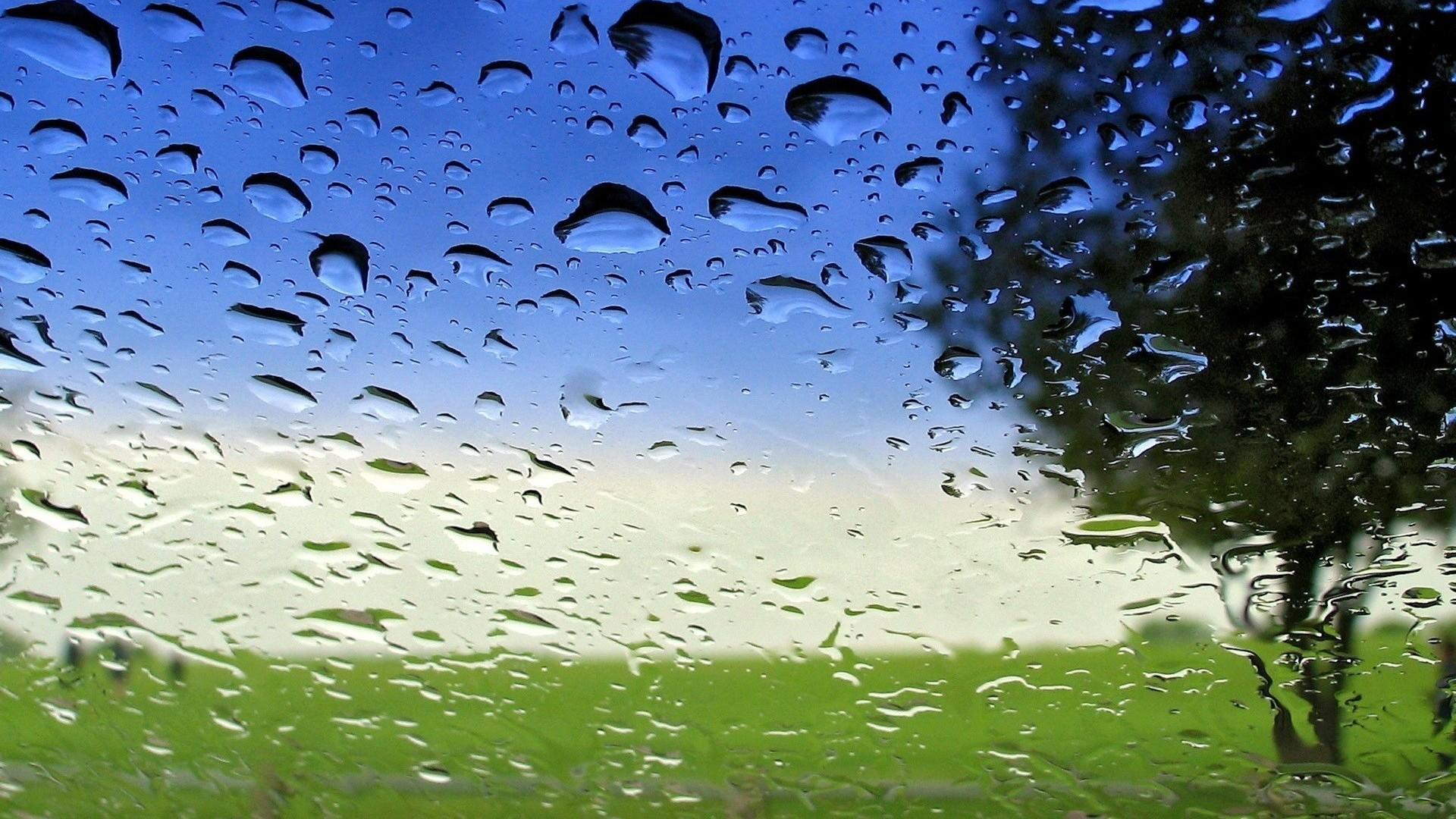 Spring Rain Wallpaper for Desktop - WallpaperSafari