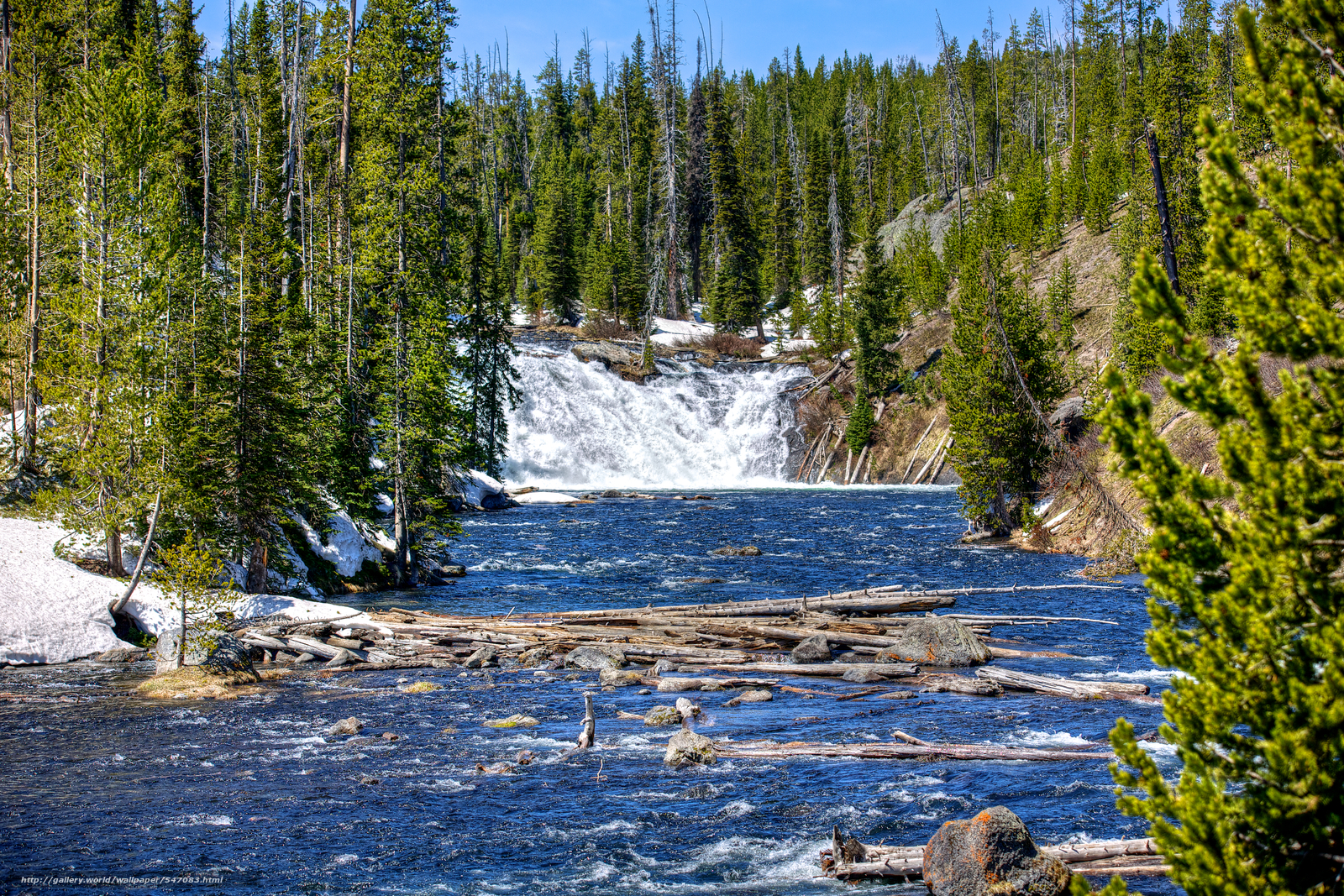 Download wallpaper Yellowstone National Park waterfall river trees 1600x1067