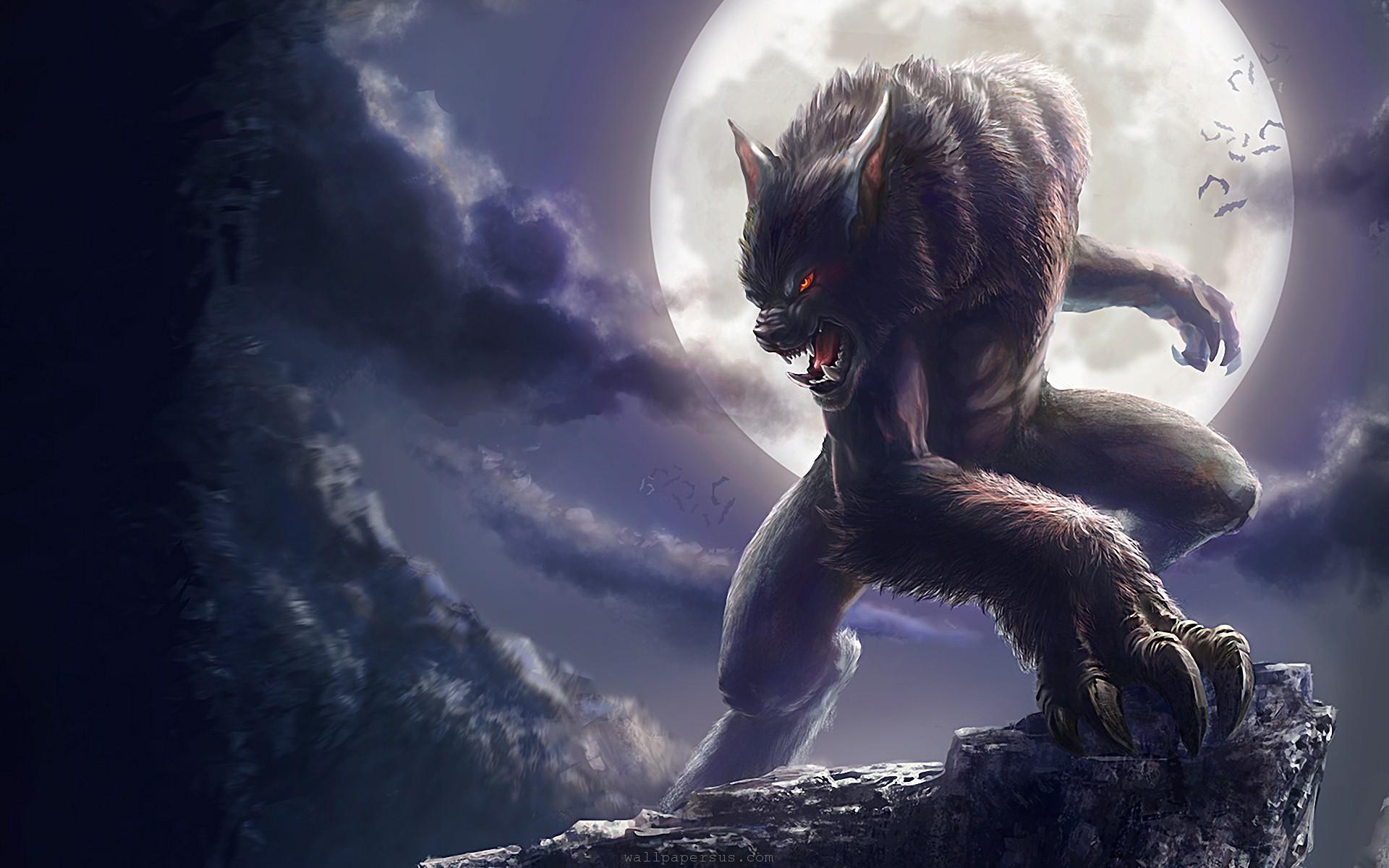 Free download Werewolf Vs Vampire Wallpaper Werewolf