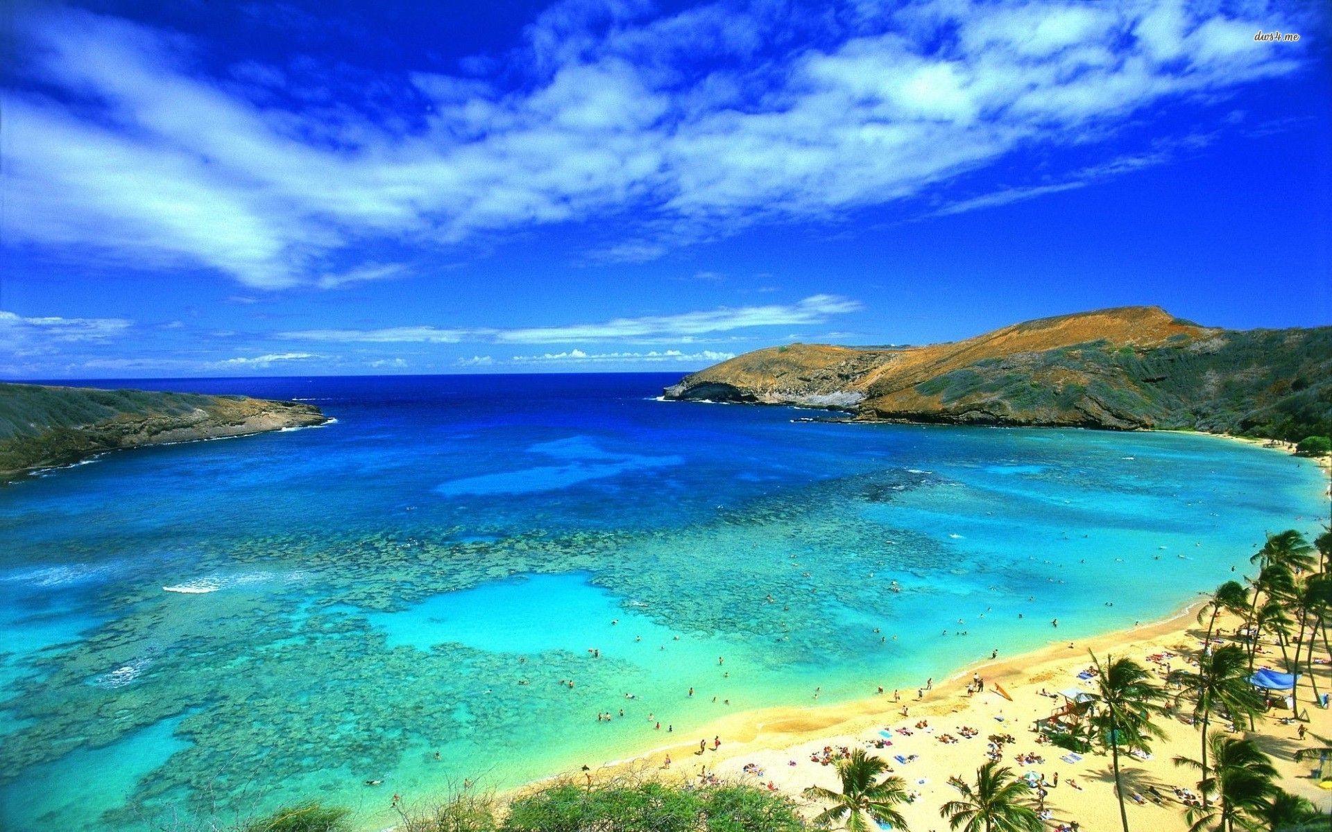 Blue Sky On Hawaii Beach Wallpaper HD #13113 Wallpaper   Wallpaper ...