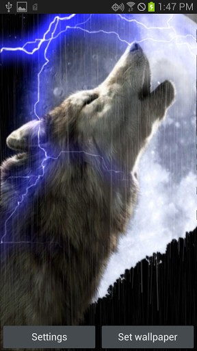 Raining Wolf 2 Live Wallpaper App for Android 288x512