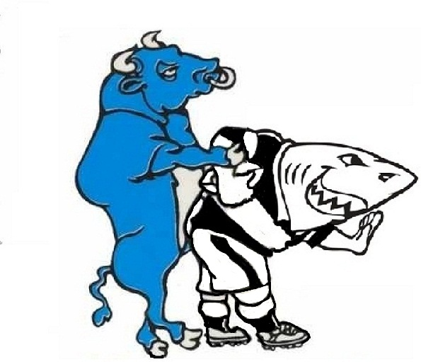 595x511px Blue Bulls Wallpapers Wallpapersafari