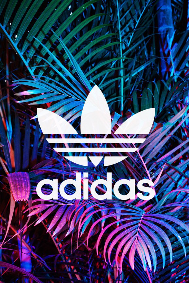Free Download 610x915px Adidas Wallpaper Tumblr 610x915