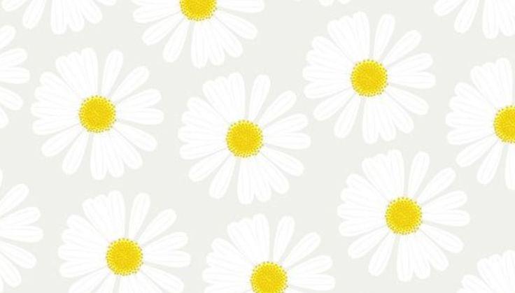 tech stuff daisy desktop desktop wallpapers daisy desktop wallpaper 1 736x419