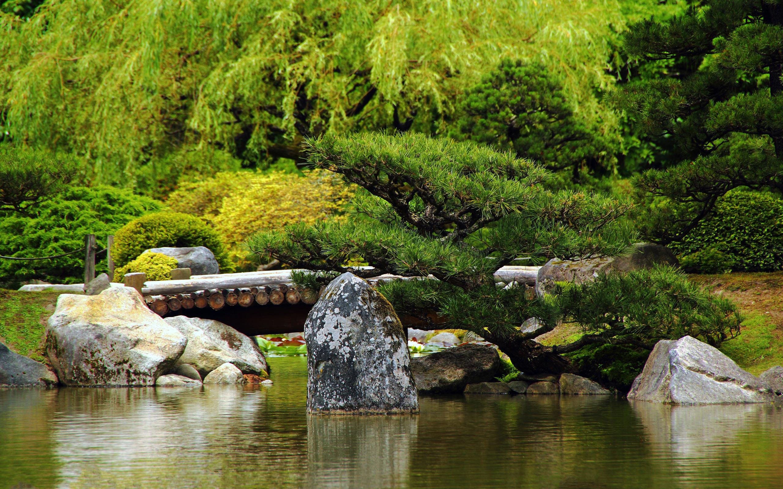 ecran nature jardin japonais wallpaper japanese garden hd 2560x1600 2560x1600