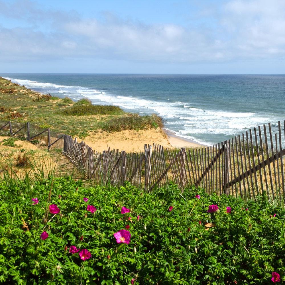 25 Gorgeous Coastal National Parks   Coastal Living 1000x1000