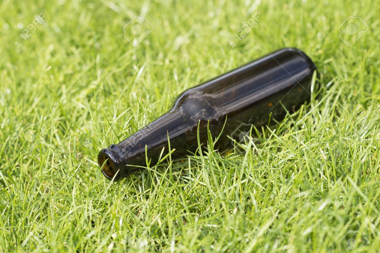 Empty Beer Bottle In A Grass Field With A Vague Background Stock 1300x867
