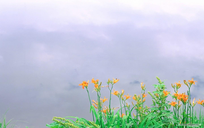 Free spring desktop wallpapers nexus wallpapersafari - Backgrounds springtime ...