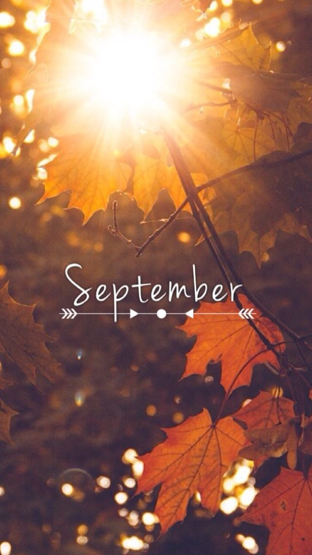 september wallpaper Tumblr WALLPAPER Fall background Fall 640x1136