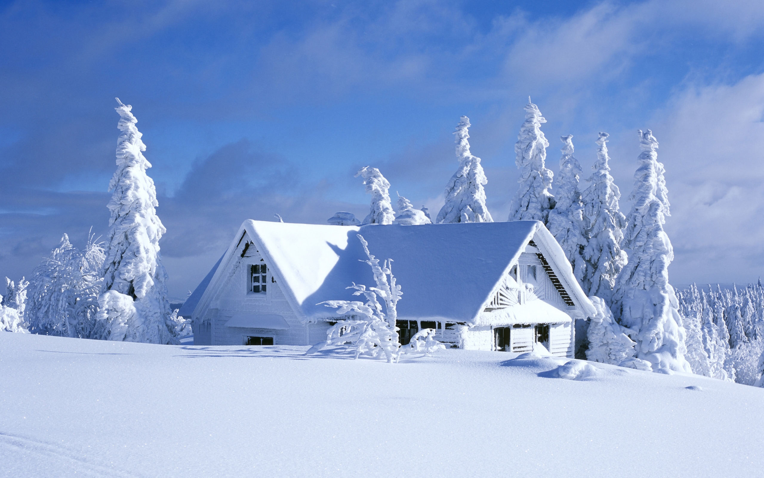 House Covered With Snow In Winter HD Wallpapers 2560x1600