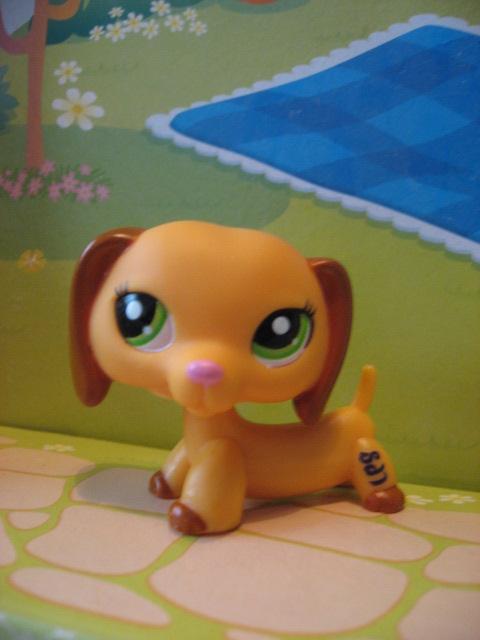 Littlest Pet Shop Wallpaper Dog Littlest pet shop dog 2597 by 480x640