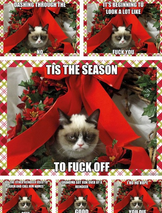 Grumpy cats Christmas meme compilation by XXspiritwolf2000XX on 555x730