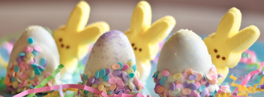 Easter Facebook Covers HD Wallpapers Pulse 851x315