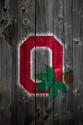 Ohio State Buckeyes Alternate Logo Wood iPhone 4 Background   a photo 333x500