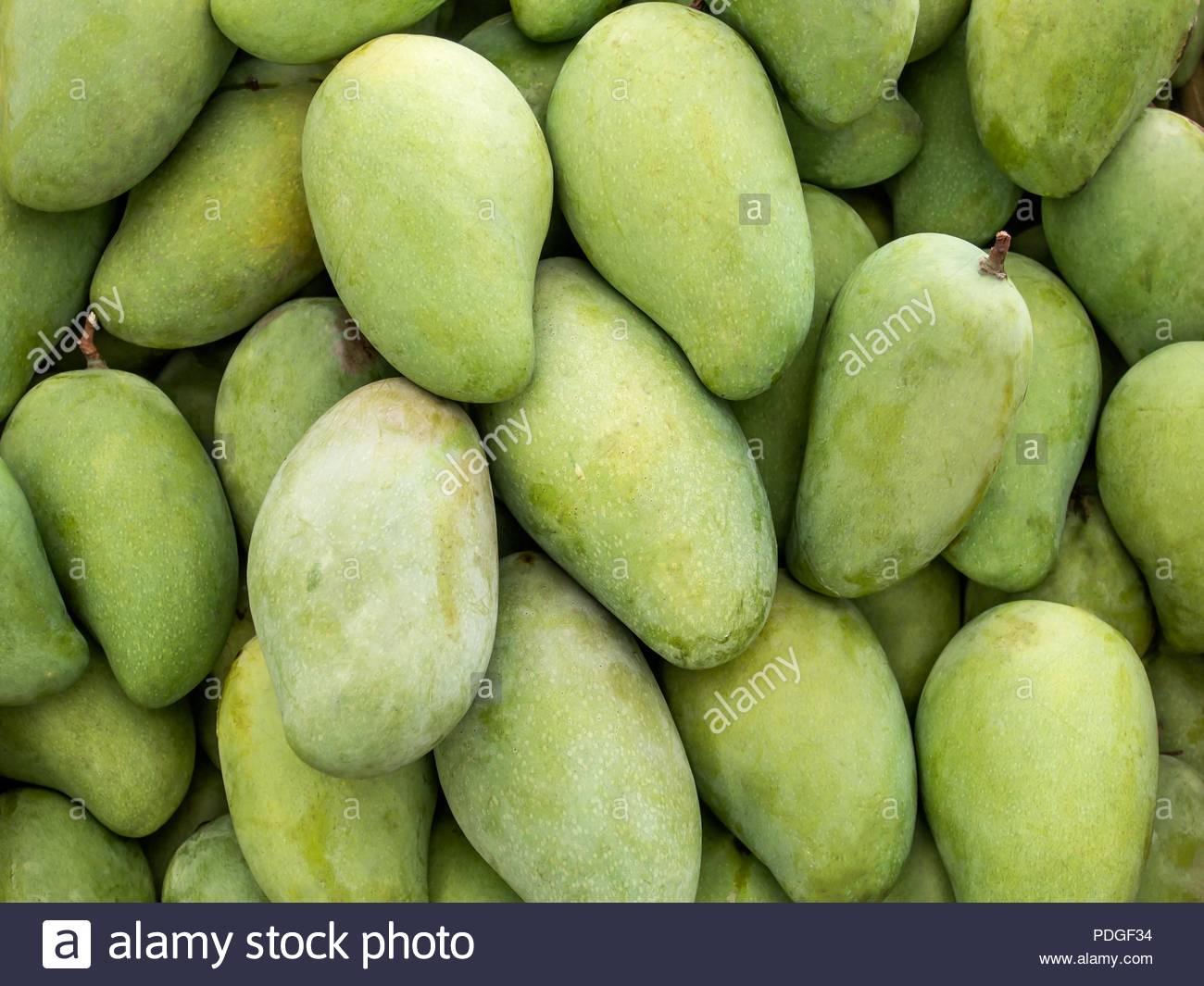 Green mango background Stock Photo 214878024   Alamy 1300x1065