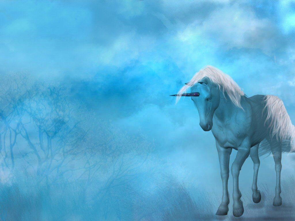 Fantasy Unicorn   Unicorns Wallpaper 4856077 1024x768