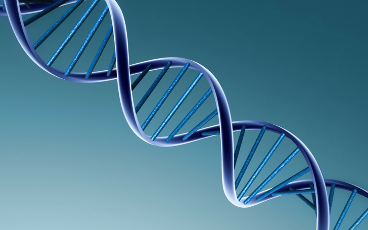 3d view dna 1920x1200 wallpaper High Quality WallpapersHigh 728x455