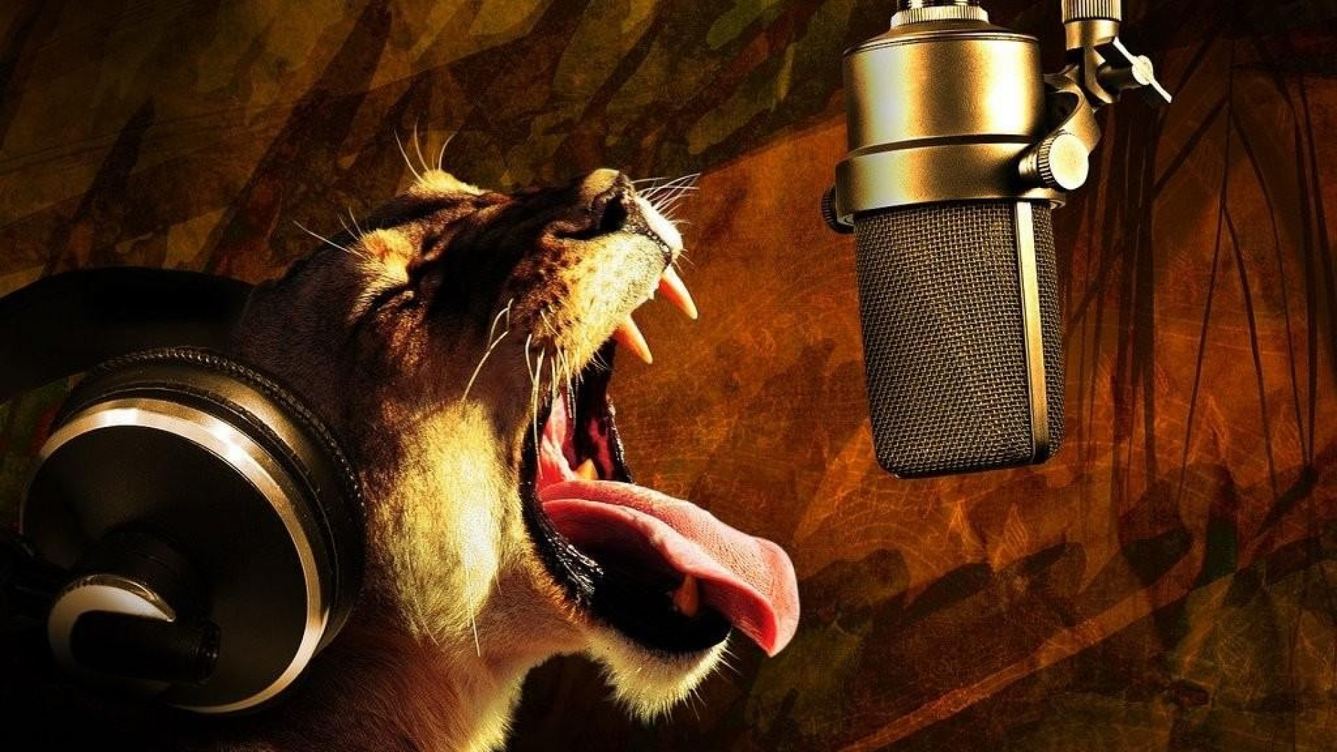 Hd Animal Wallpapers Hd Music Wallpapers: Awesome Music Wallpapers