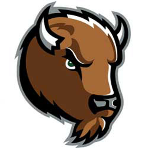 NCAA Marshall Thundering Herd   3 Large Wall Accent Murals Stickers 500x500