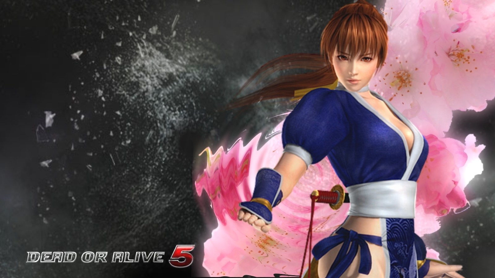 The Elderly Gamer Dead or Alive 5 Character Wallpaper 1600x900