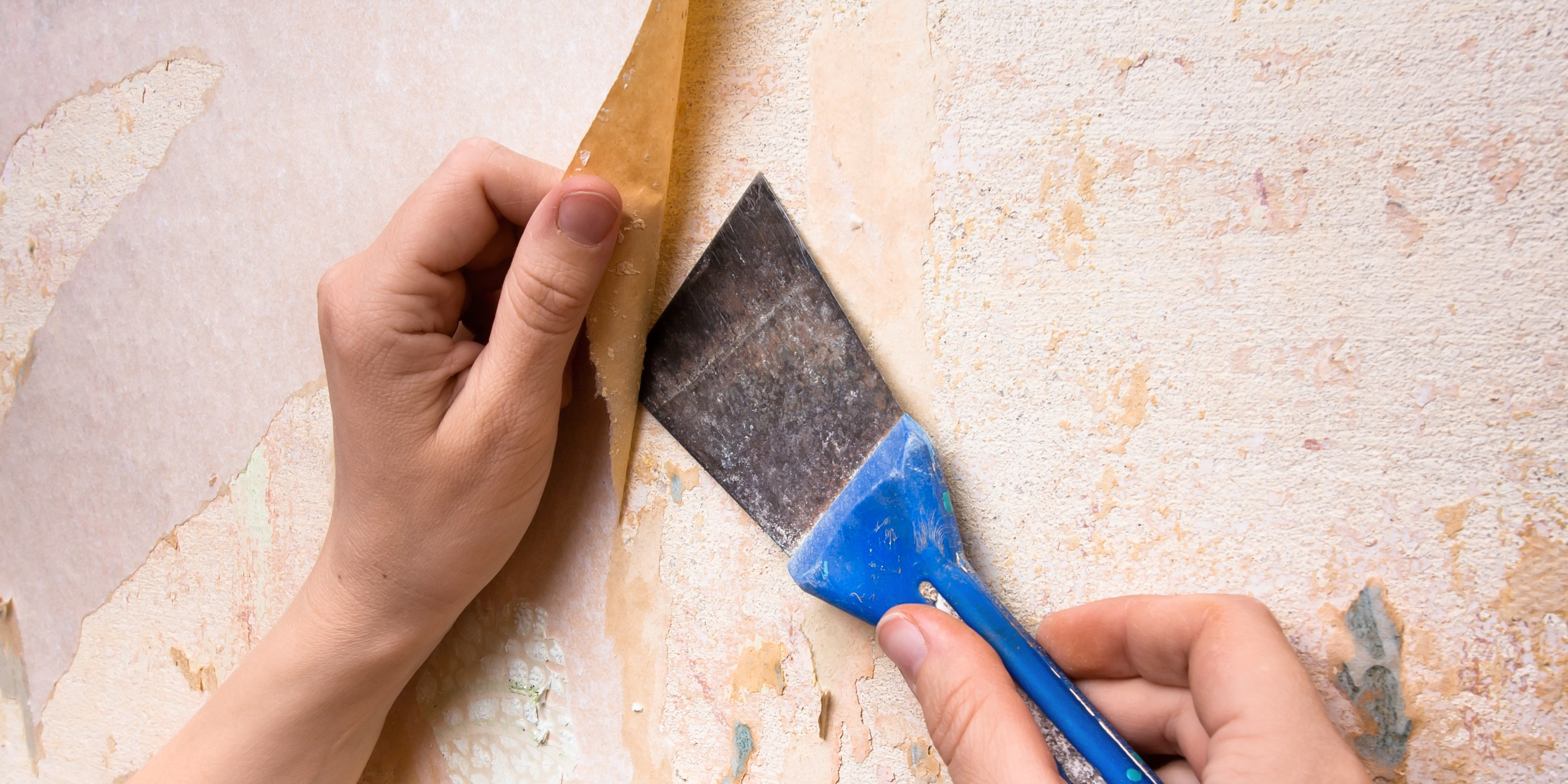 How To Remove Wallpaper Glue in 5 Simple Steps Architectural Digest 3000x1500
