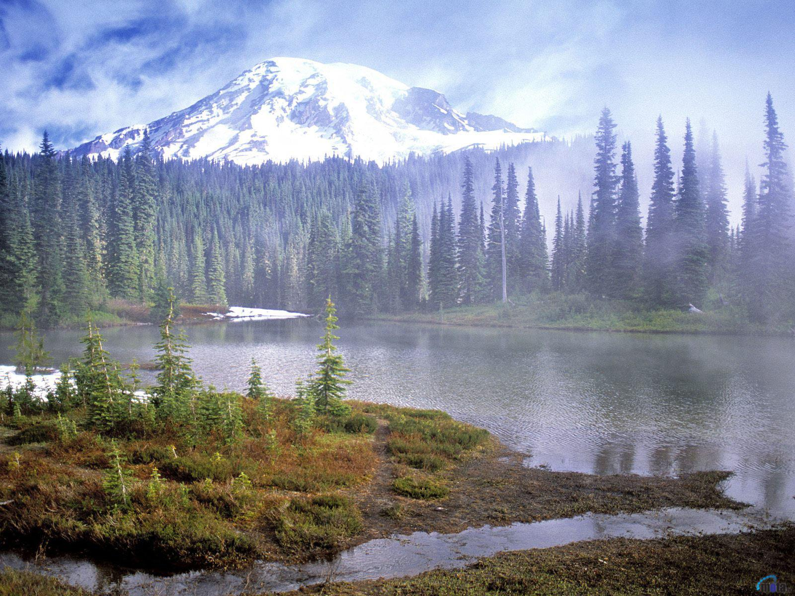 Download Wallpaper Mount Rainier National Park Washington 1600 x 1600x1200