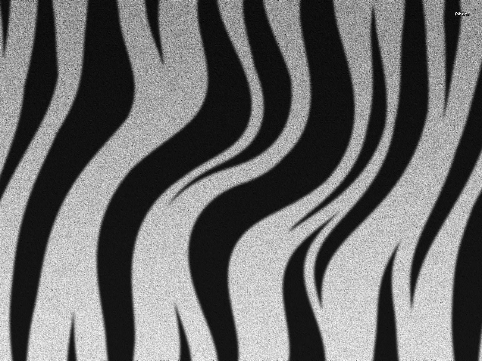 Zebra stripes wallpaper   Digital Art wallpapers   752 1600x1200