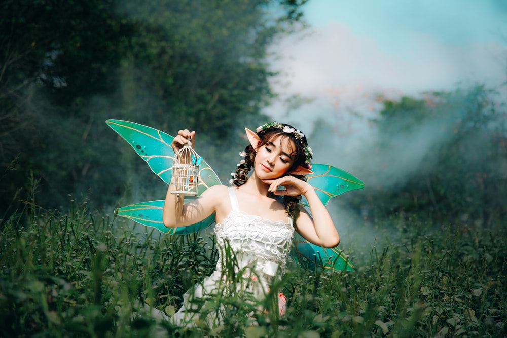 500 Fairy Pictures [HD] Download Images on Unsplash 1000x667