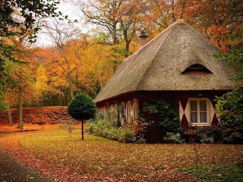Cute Autumn House wallpaper   ForWallpapercom 808x606