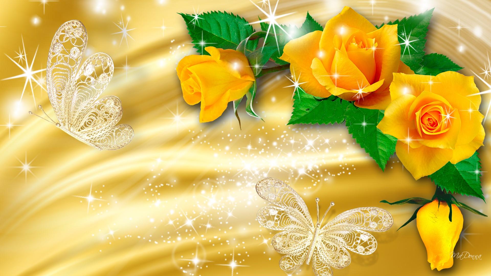 Yellow Rose Flower Wallpaper Wallpapersafari