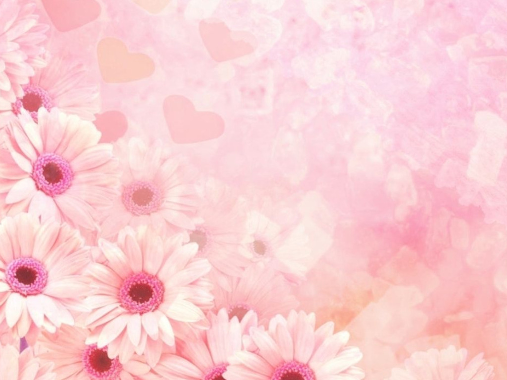All Pink Wallpapers 1024x768