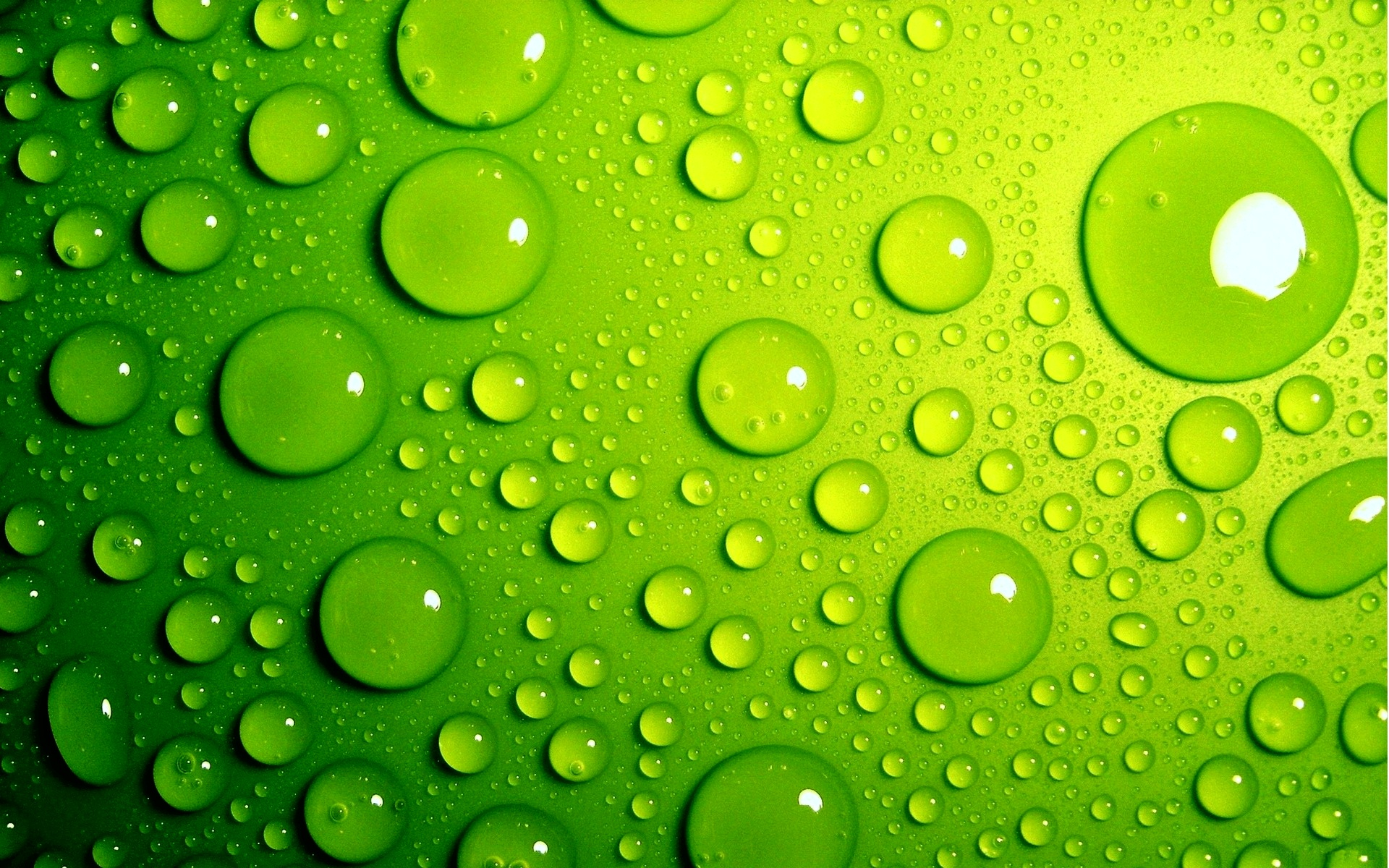 Green Bubbles Wallpapers HD Wallpapers 1920x1200